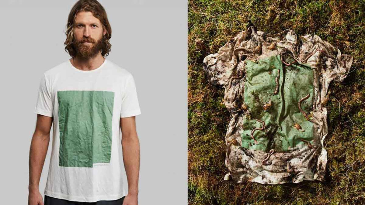 La maglietta 100% biodegradabile: Plant and Algae T-Shirt