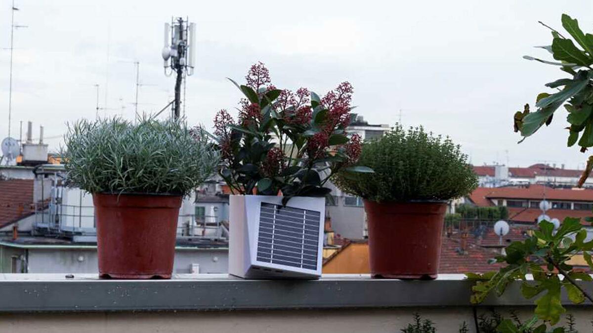 Nasce Arianna, il vaso hi-tech contro lo smog