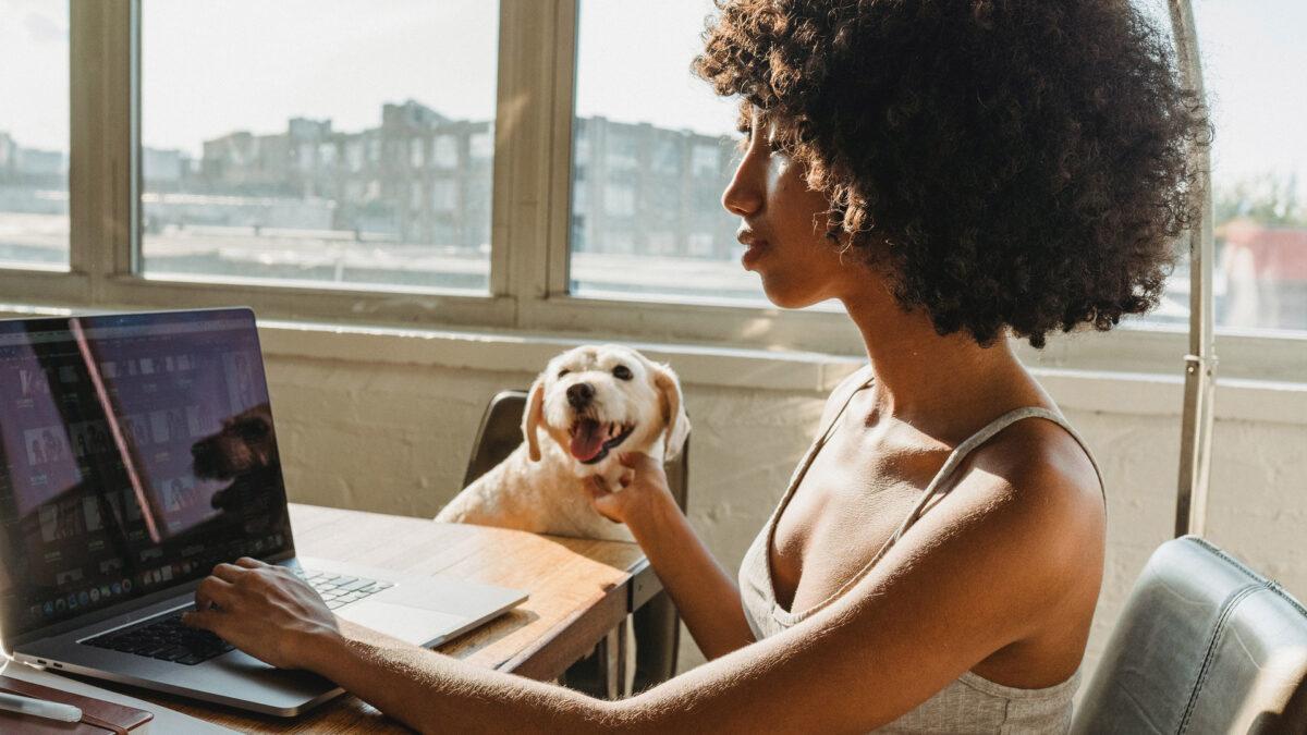 App per animali: le più utili per i pet-lovers ed i loro migliori amici